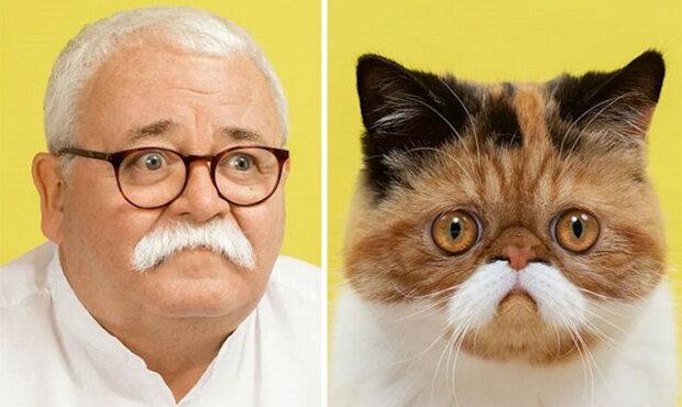 Fotograf dokázal, že kočky mají mezi lidmi dvojníky. A naopak