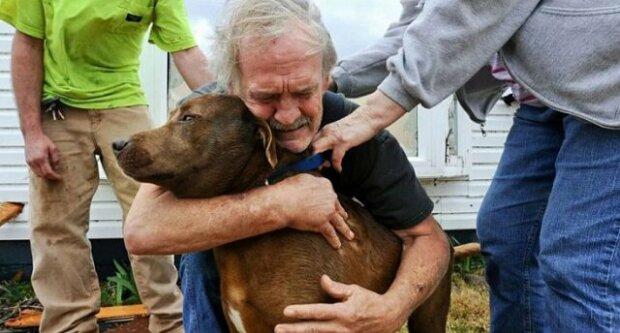 Muž utratil všechny své celoživotní úspory aby zachránil nemocného psa
