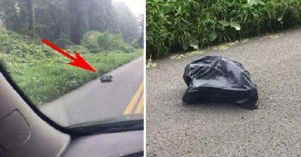 Žena prudce zabrzdila a jen tak tak minula tašku ležící na cestě. Když zastavila a podívala se do ní, byla v šoku
