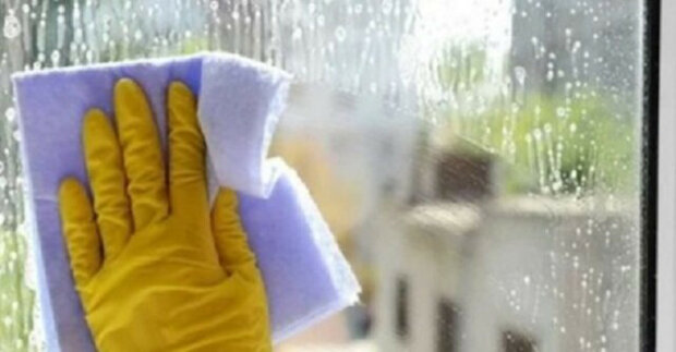 Okna lze umýt jednou ročně, aby se neznečistily. Podívejte se na moji metodu