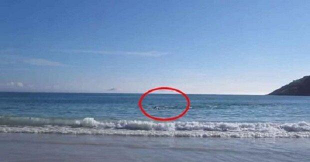 Muž si chtěl natočit brazilskou pláž. Ale nemohl uvěřit tomu, co na videu zachytil