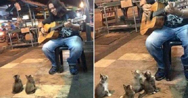 Pouliční muzikant už téměř končil svůj výstup, když se z ničeho nic objevily ony
