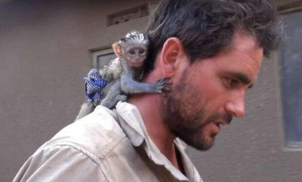 Příběh malé opičky, která miluje muže, který ji zachránil při požáru
