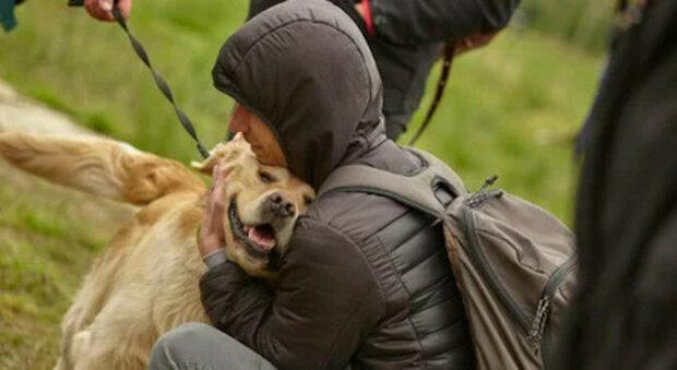 Pes z útulku utekl, aby objal náhodného návštěvníka, který se poté už nemohl vrátit domů sám