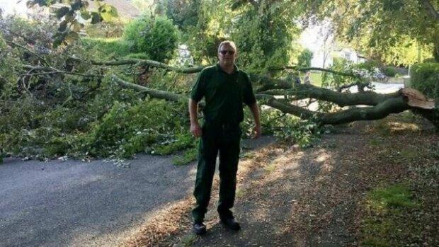 Pes ve zlomku sekundy zachránil svého majitele před padajícím stromem