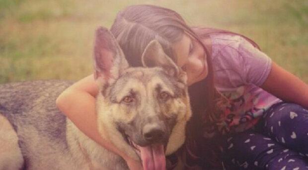Dívka a pes byli stejně staří, ale lupiči to nevěděli