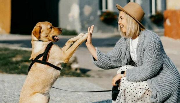 Logopedka naučil psa mluvit: zvíře už umí 40 slov a dokonce vede malé dialogy se svým majitelem