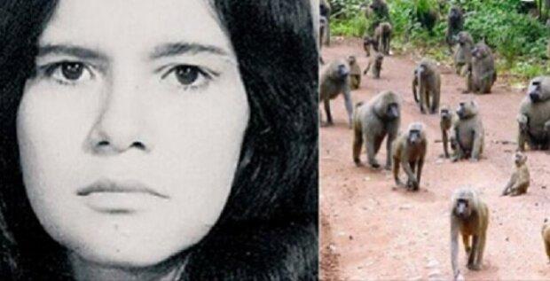 Příběh Mariny, přes 5 let vychovávané opicemi
