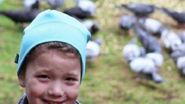 Dívenka každý den krmila ptáky a ti se jí později začali odvděčovat