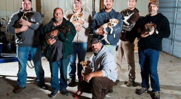 Aby zachránila svoje štěnata, bludná fena bez domova přepadla piknik 8 mužů a změnila jejich život