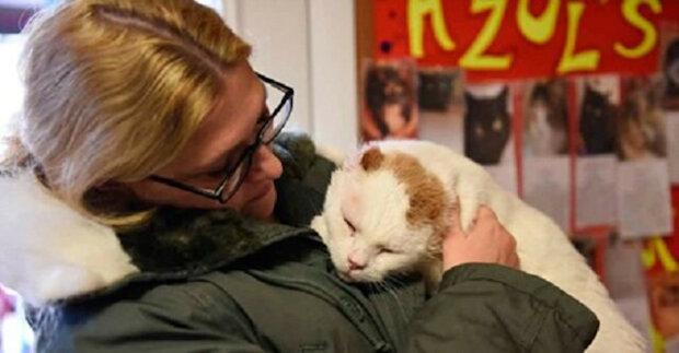 """""""Nikoho s sebou nebereme"""" - řekla svým dcerám, když vstoupila do útulku a uviděla tu nejnechtěnější kočku"""