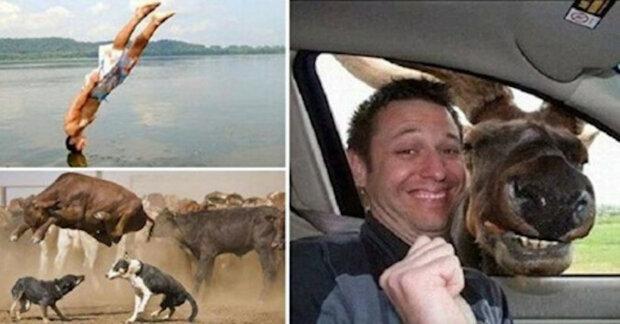 Vtipné fotografie pořízené ve správný čas