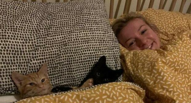 """10 veselých příkladů toho, jak zvířata """"okupují"""" postele svých majitelů"""