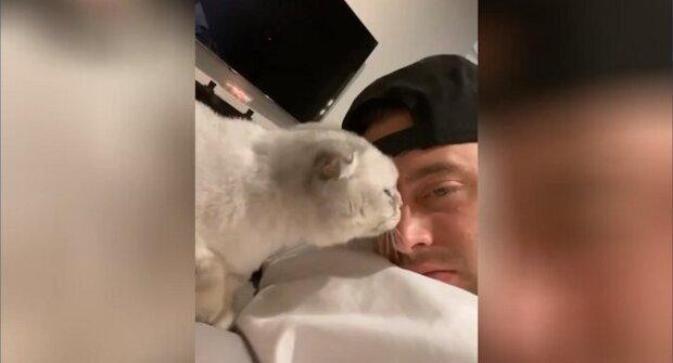 Chlap se rozhodl olíznout milující kočku - vtipná reakce domácího mazlíčka na záběrech