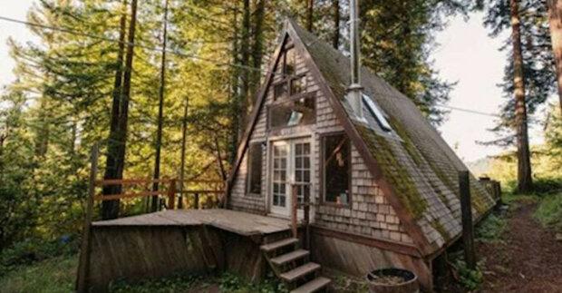 Tento malý domek se podobá střeše uprostřed lesa. Ale nedělejte ukvapené závěry