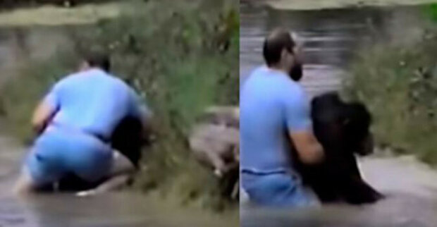 Muž spěchal do vody, aby opici zachránil. Pracovníci zoo odmítli topícímu se zvířeti pomoci