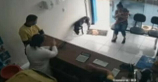 Na kliniku přišel zatoulaný pes, aby požádal lidi o pomoc